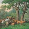Az Esterházy család fővadászatai Ozorán