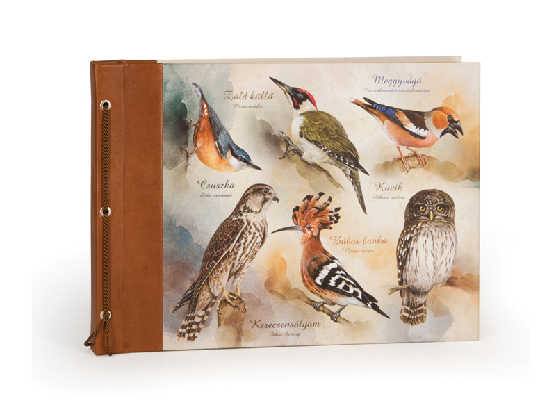 Vintage fotóalbum madarak