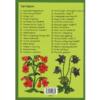 Magyar virágok kifestőkönyve