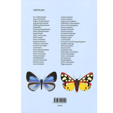 Magyarországi lepkék kifestőkönyve